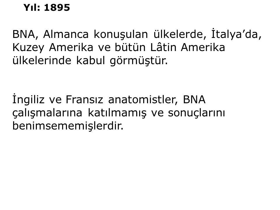 Yıl: 1895 BNA, Almanca konuşulan ülkelerde, İtalya'da, Kuzey Amerika ve bütün Lâtin Amerika ülkelerinde kabul görmüştür.