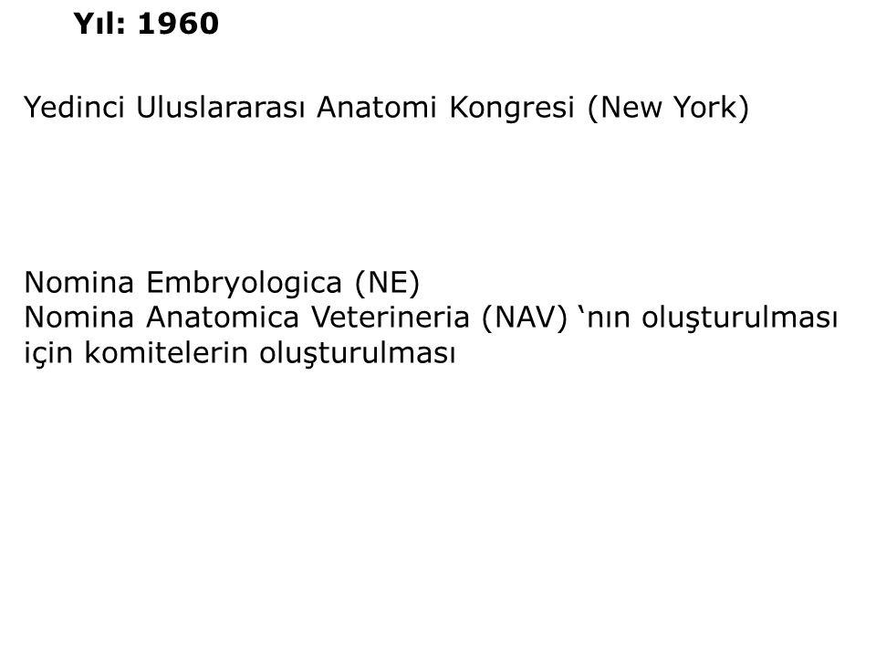 Yıl: 1960 Yedinci Uluslararası Anatomi Kongresi (New York) Nomina Embryologica (NE)