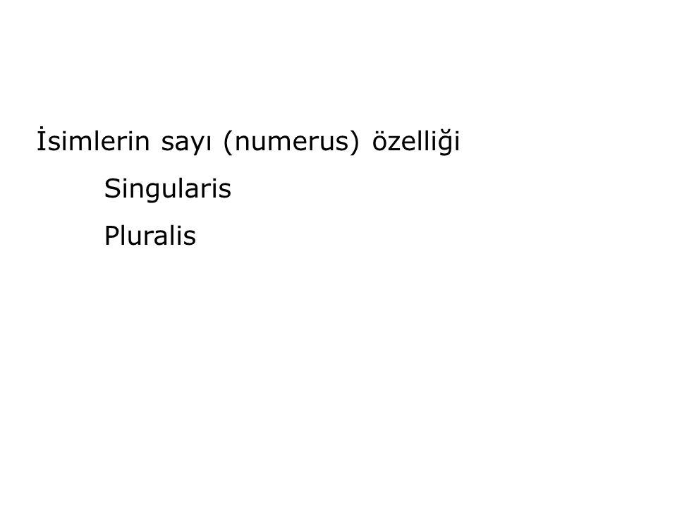 İsimlerin sayı (numerus) özelliği