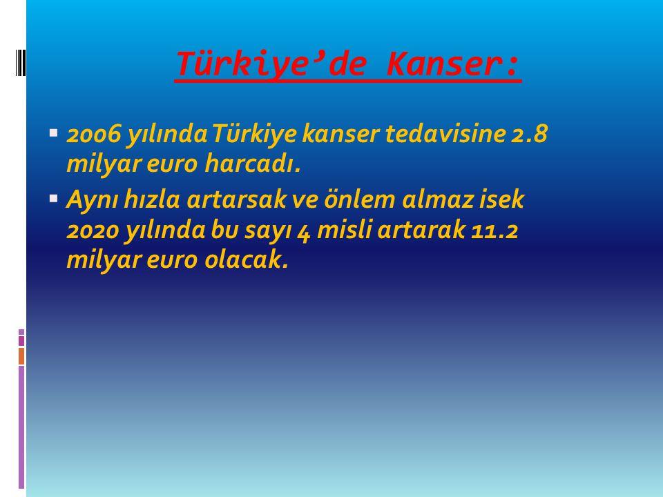 Türkiye'de Kanser: 2006 yılında Türkiye kanser tedavisine 2.8 milyar euro harcadı.