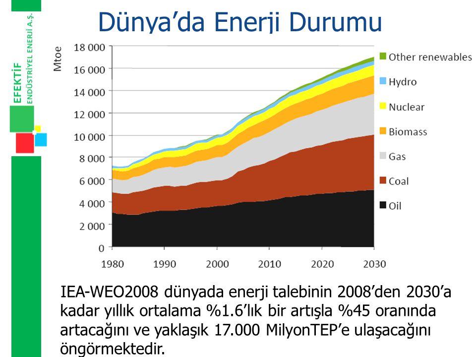 Dünya'da Enerji Durumu