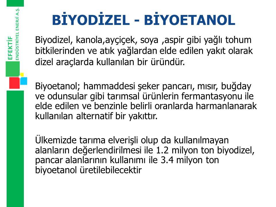 BİYODİZEL - BİYOETANOL