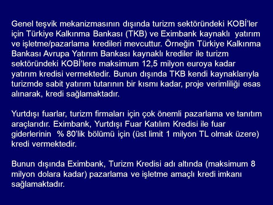 Genel teşvik mekanizmasının dışında turizm sektöründeki KOBİ'ler için Türkiye Kalkınma Bankası (TKB) ve Eximbank kaynaklı yatırım ve işletme/pazarlama kredileri mevcuttur. Örneğin Türkiye Kalkınma Bankası Avrupa Yatırım Bankası kaynaklı krediler ile turizm sektöründeki KOBİ'lere maksimum 12,5 milyon euroya kadar yatırım kredisi vermektedir. Bunun dışında TKB kendi kaynaklarıyla turizmde sabit yatırım tutarının bir kısmı kadar, proje verimliliği esas alınarak, kredi sağlamaktadır.
