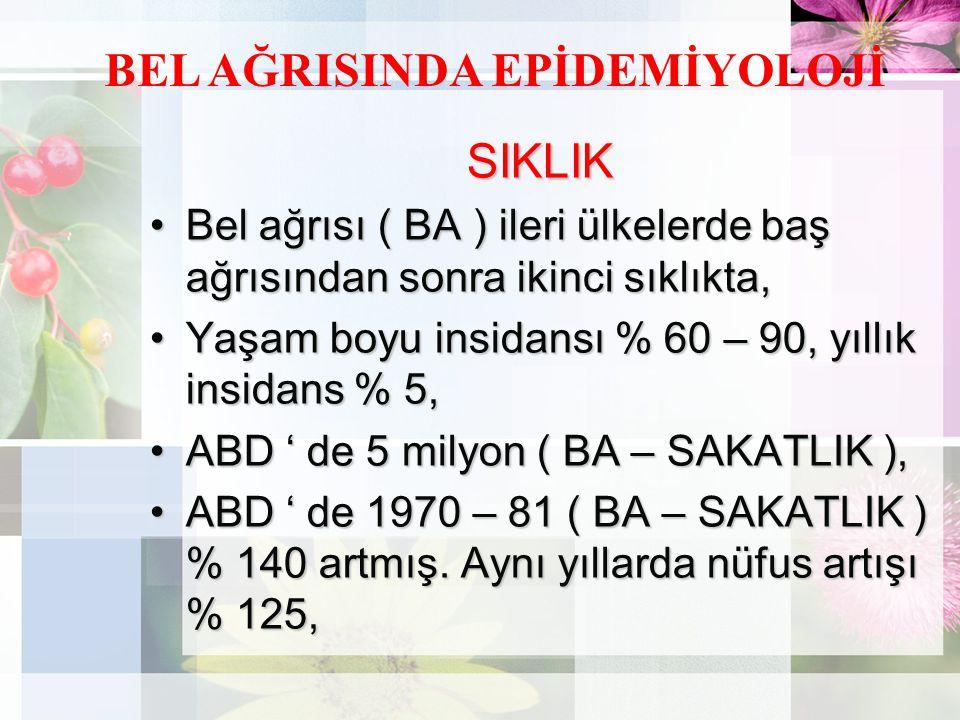 BEL AĞRISINDA EPİDEMİYOLOJİ