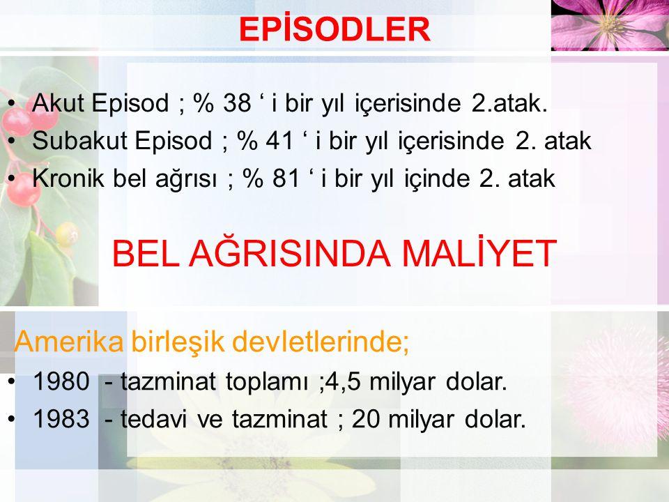 BEL AĞRISINDA MALİYET EPİSODLER