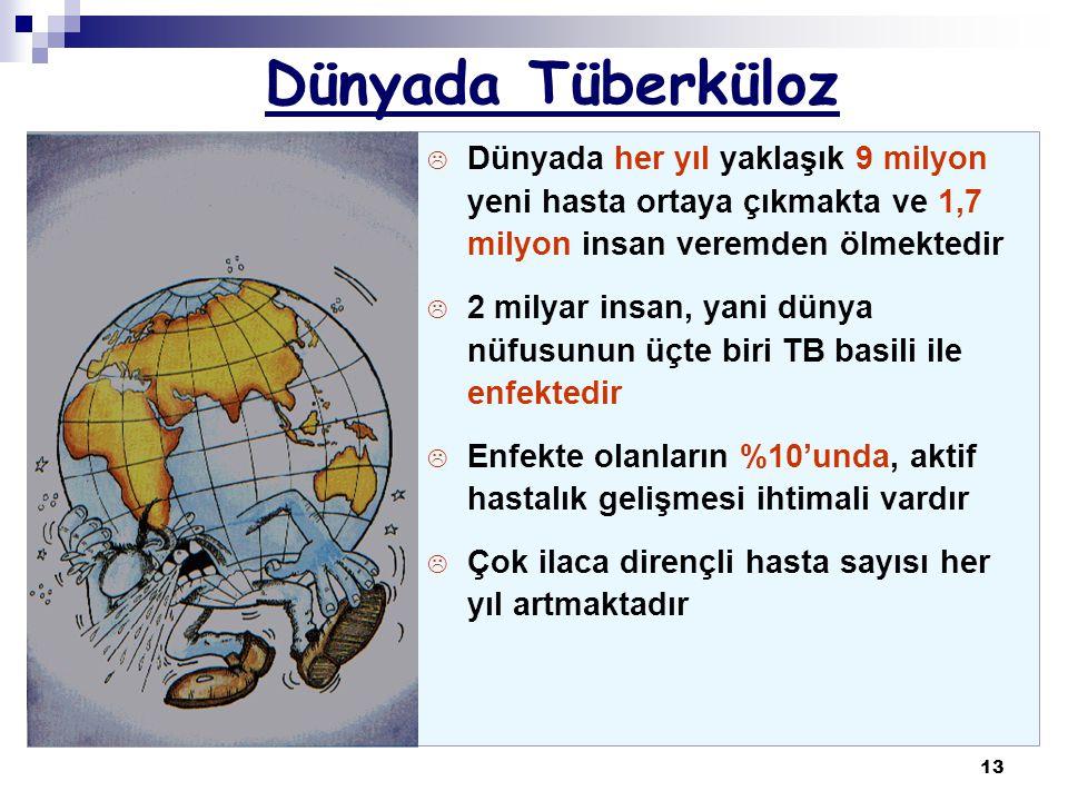 Dünyada Tüberküloz Dünyada her yıl yaklaşık 9 milyon yeni hasta ortaya çıkmakta ve 1,7 milyon insan veremden ölmektedir.