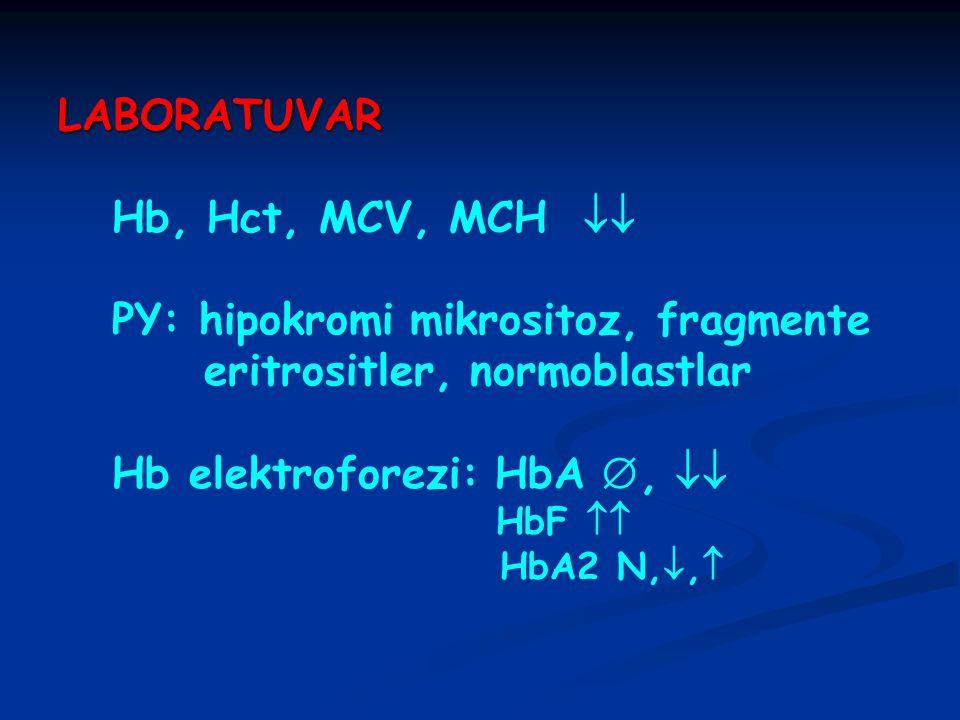 PY: hipokromi mikrositoz, fragmente eritrositler, normoblastlar