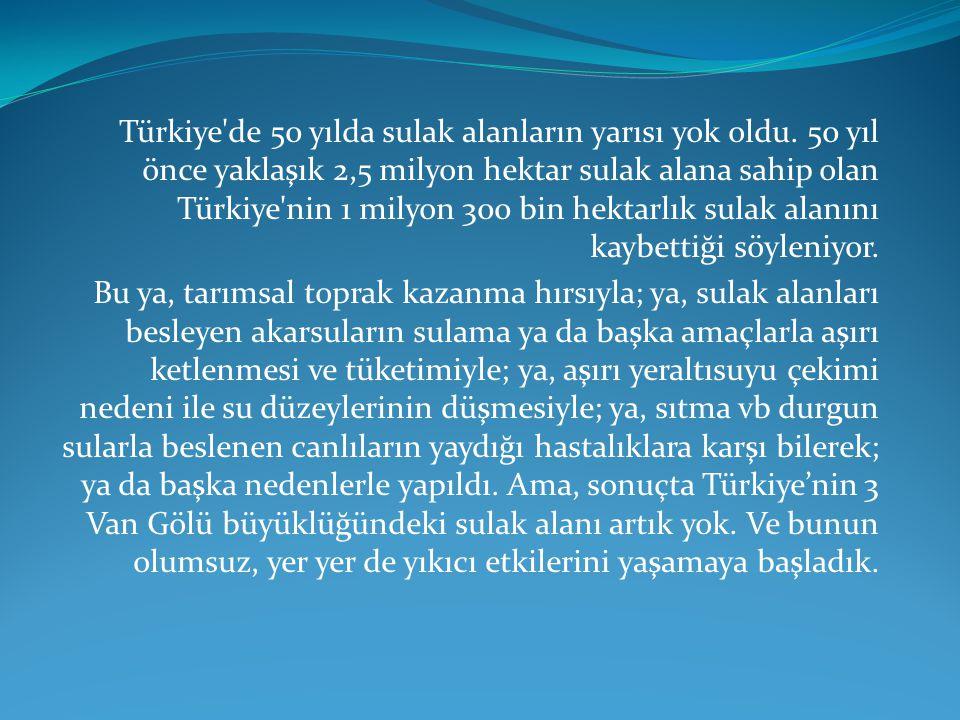 Türkiye de 50 yılda sulak alanların yarısı yok oldu