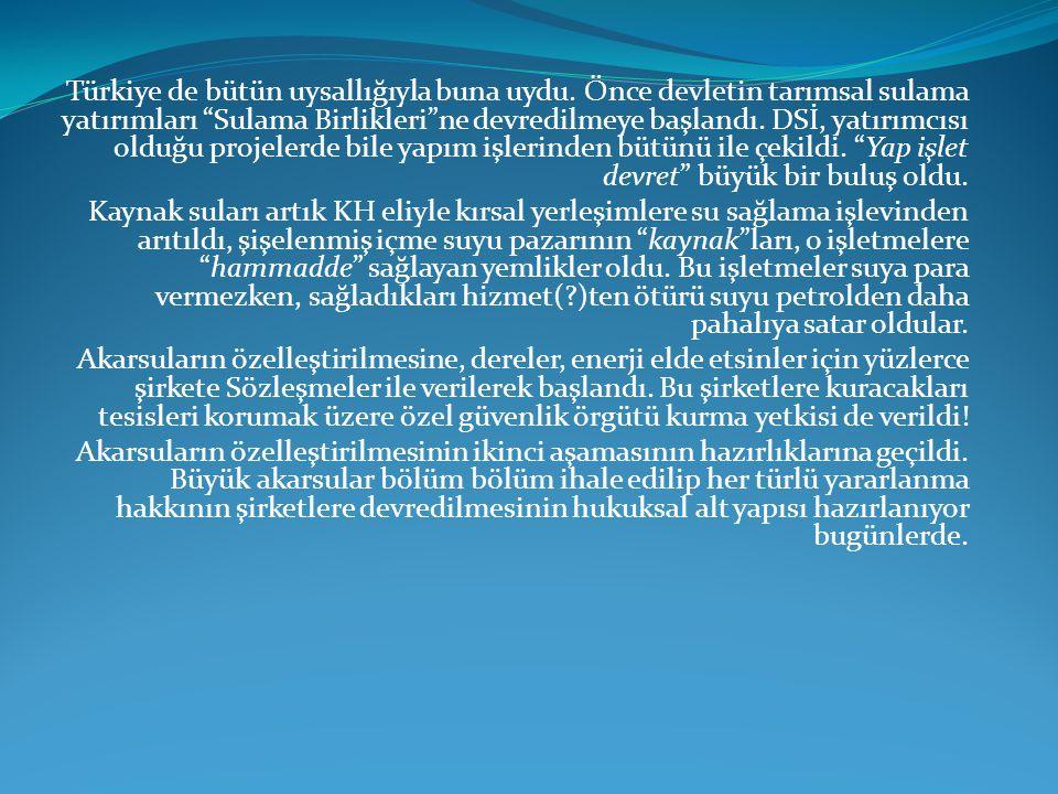 Türkiye de bütün uysallığıyla buna uydu