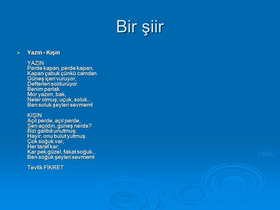 Bir şiir