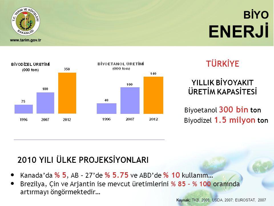 Biyoetanol 300 bin ton Biyodizel 1.5 milyon ton