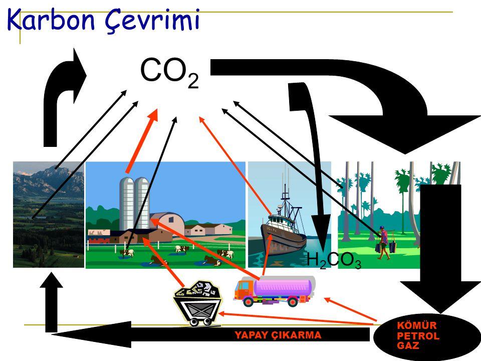 CO2 Karbon Çevrimi H2CO3 SU FOTOSENTEZ FOSİLLEŞME KÖMÜR PETROL GAZ