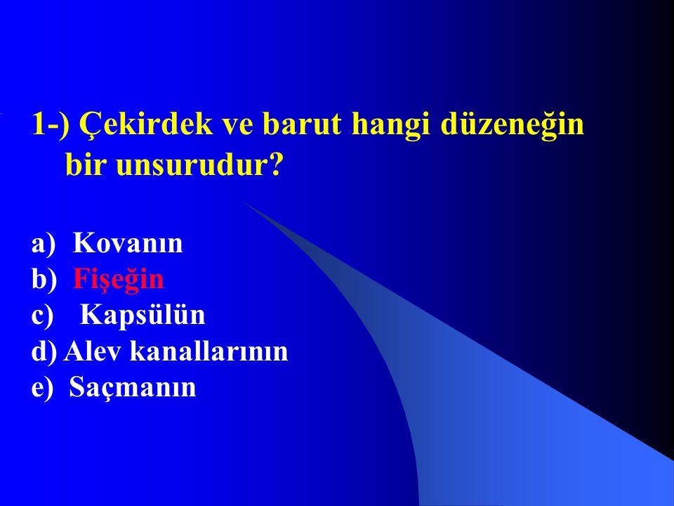 1-) Çekirdek ve barut hangi düzeneğin bir unsurudur