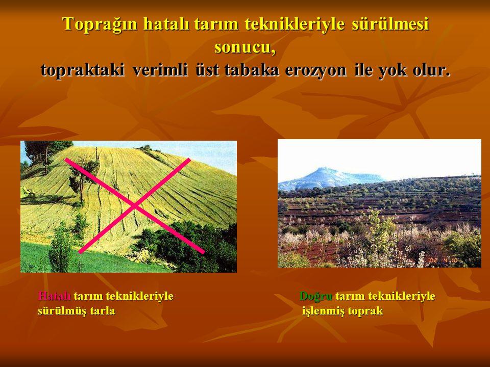 Toprağın hatalı tarım teknikleriyle sürülmesi sonucu, topraktaki verimli üst tabaka erozyon ile yok olur.