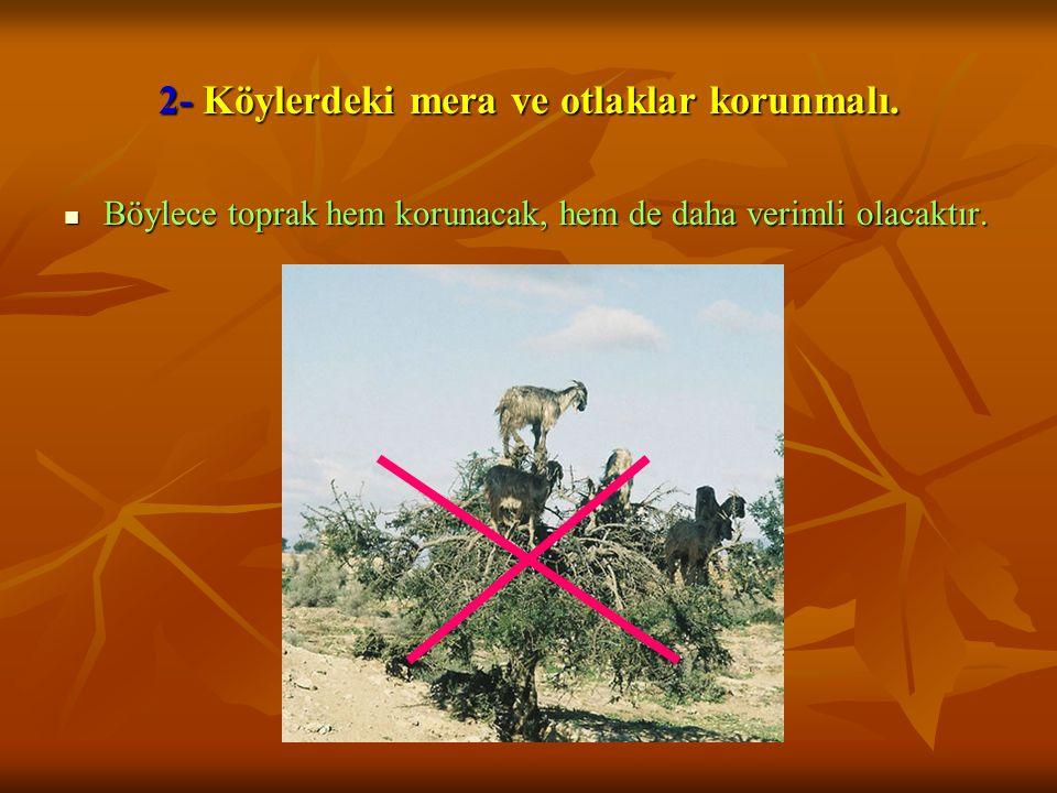 2- Köylerdeki mera ve otlaklar korunmalı.