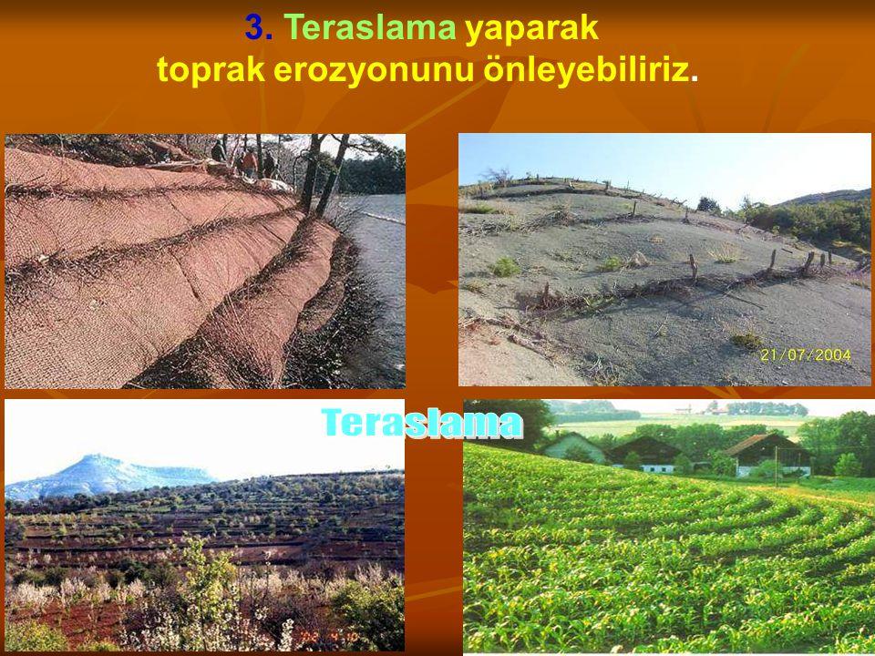 toprak erozyonunu önleyebiliriz.