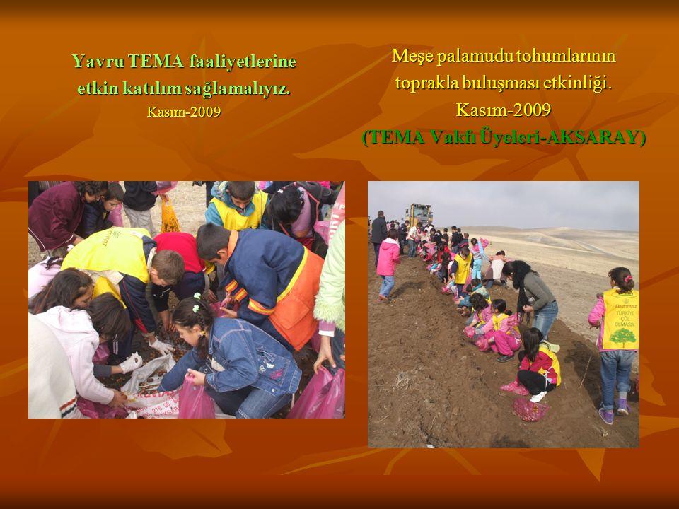 Meşe palamudu tohumlarının toprakla buluşması etkinliği. Kasım-2009