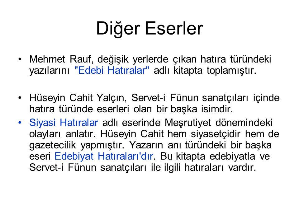 Diğer Eserler Mehmet Rauf, değişik yerlerde çıkan hatıra türündeki yazılarını Edebi Hatıralar adlı kitapta toplamıştır.