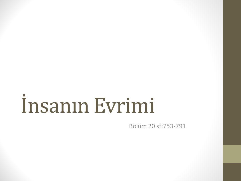 İnsanın Evrimi Bölüm 20 sf:753-791