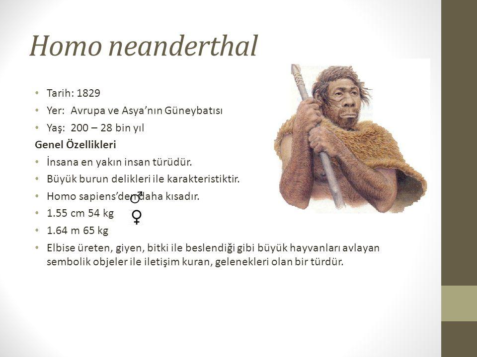 Homo neanderthal Tarih: 1829 Yer: Avrupa ve Asya'nın Güneybatısı