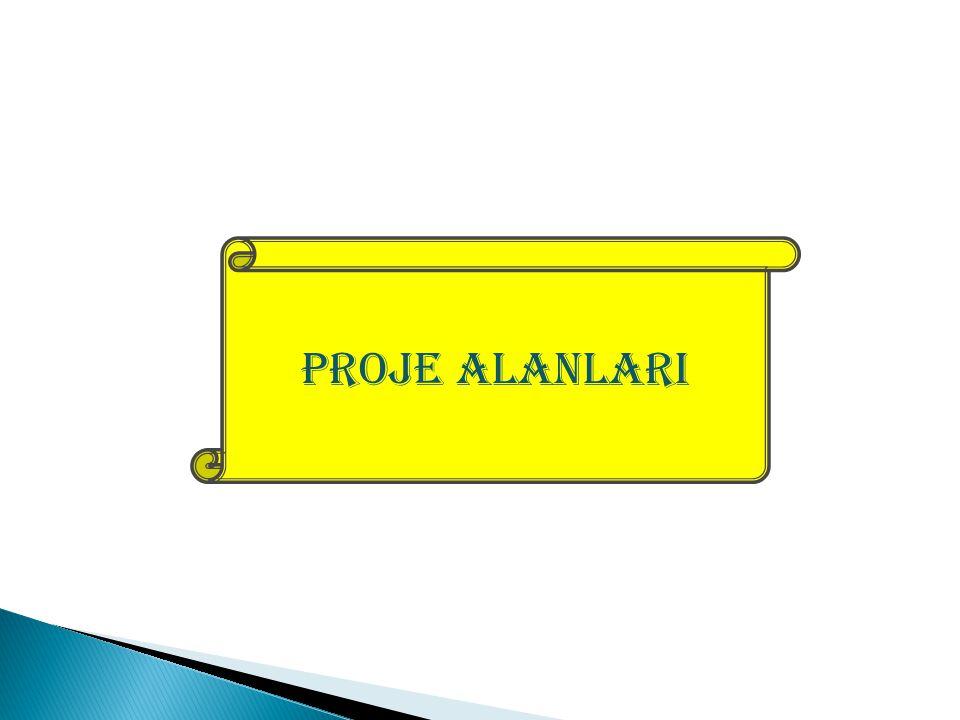 PROJE ALANLARI