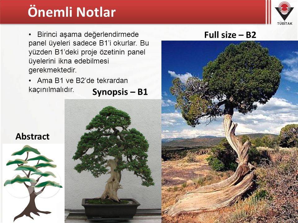 Önemli Notlar Full size – B2 Synopsis – B1 Abstract
