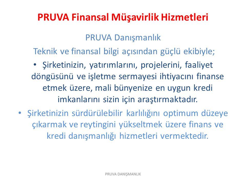 PRUVA Finansal Müşavirlik Hizmetleri
