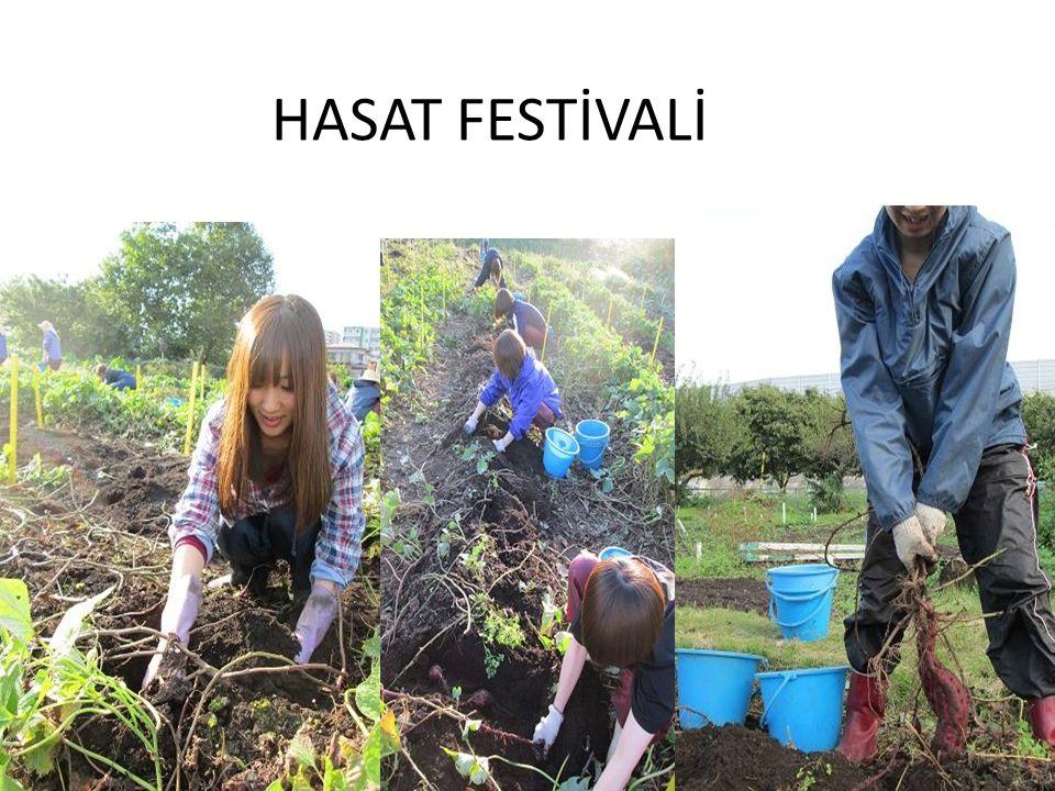 HASAT FESTİVALİ