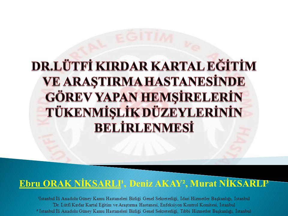 Ebru ORAK NİKSARLI¹, Deniz AKAY², Murat NİKSARLI³