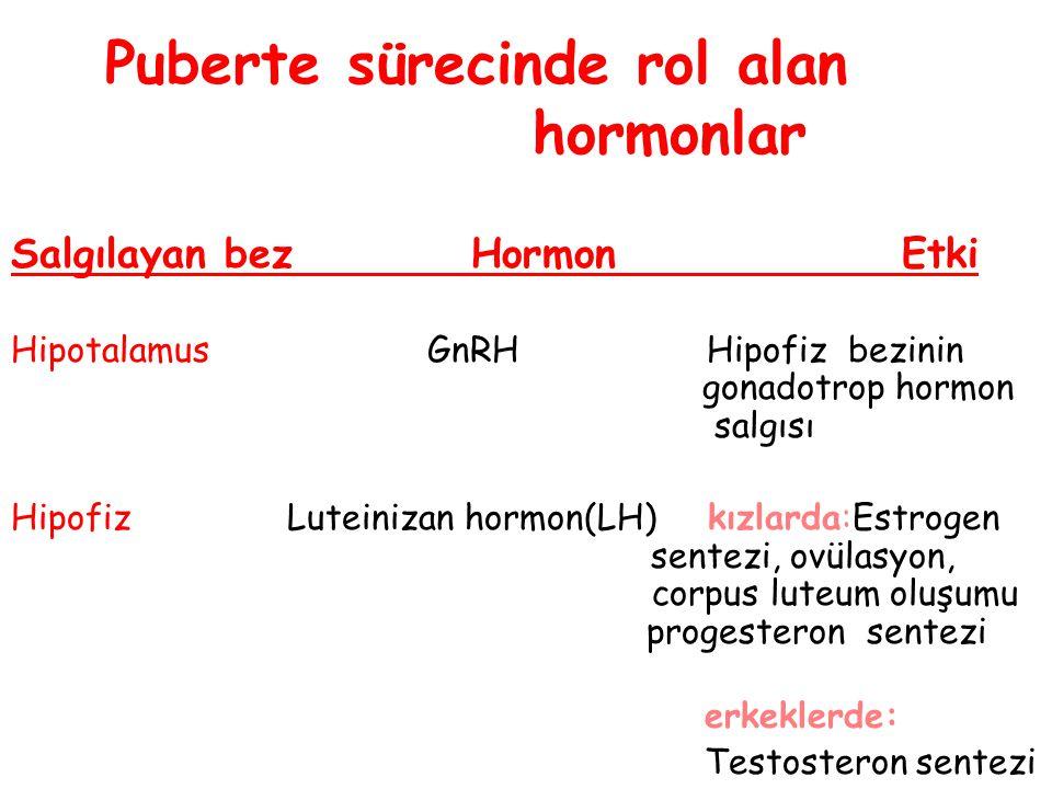 Puberte sürecinde rol alan hormonlar