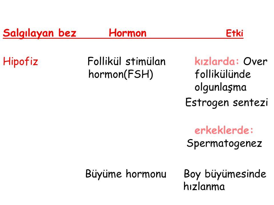 Salgılayan bez Hormon Etki