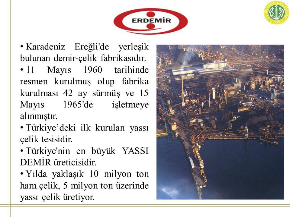 Karadeniz Ereğli de yerleşik bulunan demir-çelik fabrikasıdır.