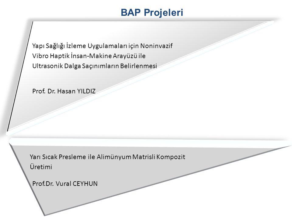 BAP Projeleri Yapı Sağlığı İzleme Uygulamaları için Noninvazif Vibro Haptik İnsan-Makine Arayüzü ile Ultrasonik Dalga Saçınımların Belirlenmesi.