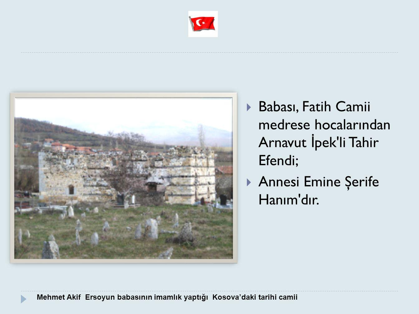 Babası, Fatih Camii medrese hocalarından Arnavut İpek li Tahir Efendi;