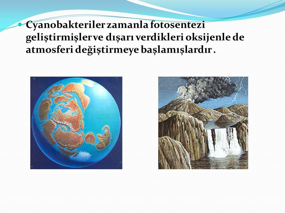Cyanobakteriler zamanla fotosentezi geliştirmişler ve dışarı verdikleri oksijenle de atmosferi değiştirmeye başlamışlardır .