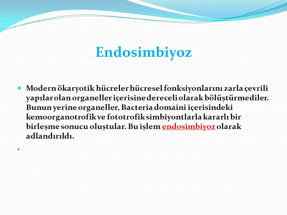 Endosimbiyoz