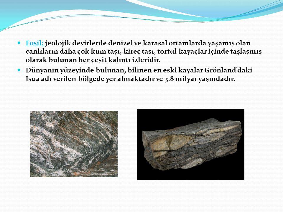 Fosil; jeolojik devirlerde denizel ve karasal ortamlarda yaşamış olan canlıların daha çok kum taşı, kireç taşı, tortul kayaçlar içinde taşlaşmış olarak bulunan her çeşit kalıntı izleridir.
