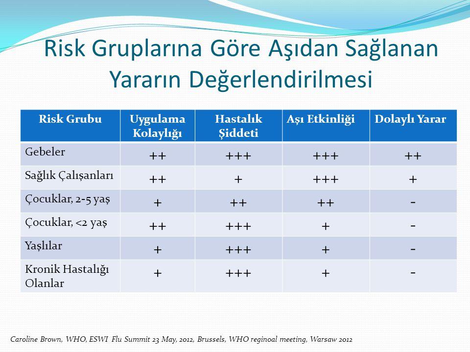 Risk Gruplarına Göre Aşıdan Sağlanan Yararın Değerlendirilmesi