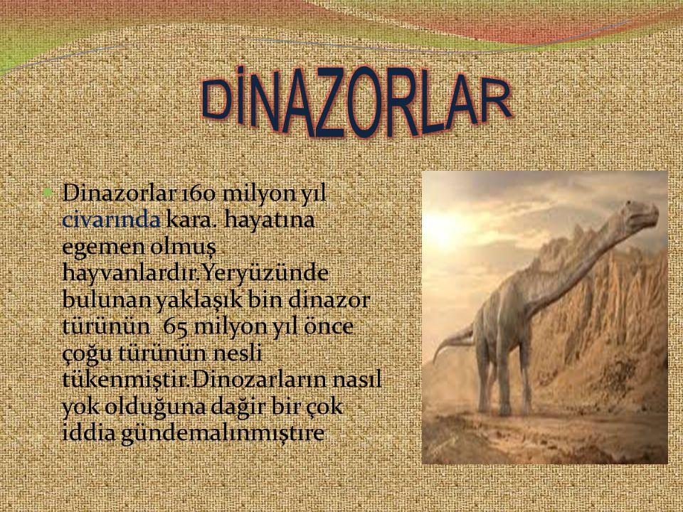 DİNAZORLAR
