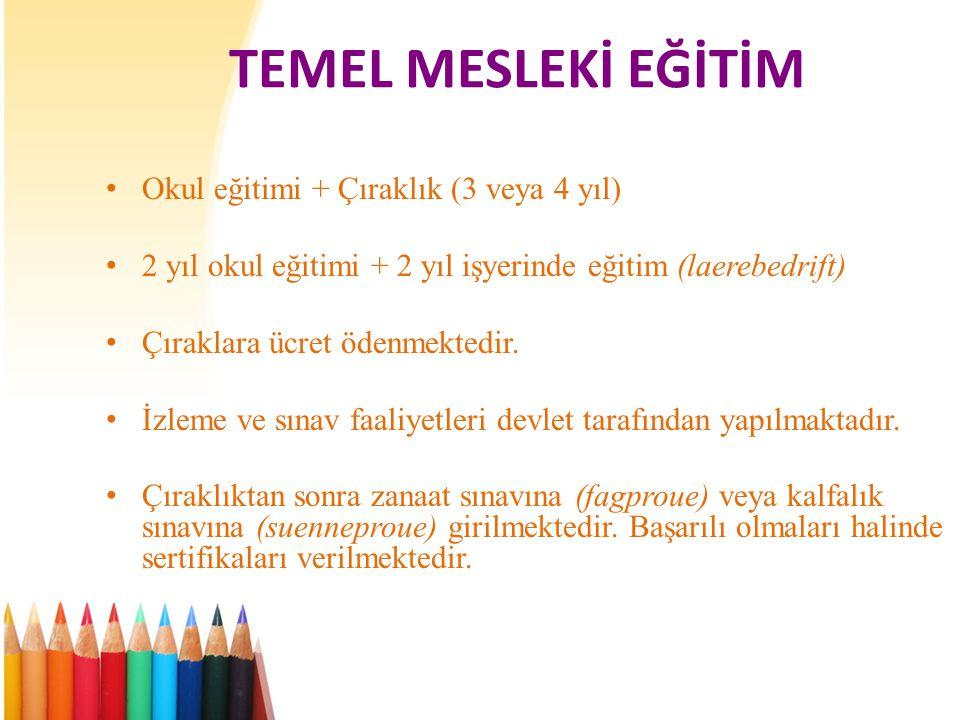 TEMEL MESLEKİ EĞİTİM Okul eğitimi + Çıraklık (3 veya 4 yıl)