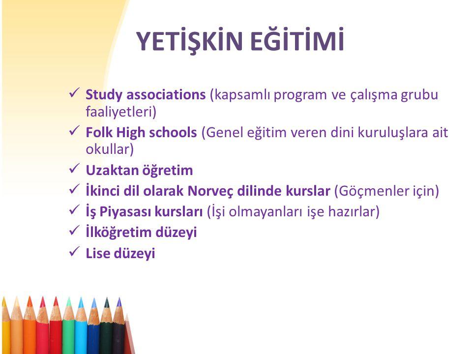 YETİŞKİN EĞİTİMİ Study associations (kapsamlı program ve çalışma grubu faaliyetleri)
