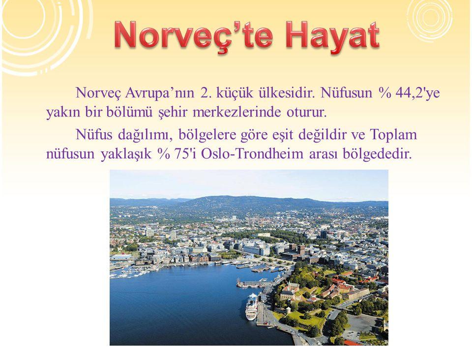 Norveç'te Hayat