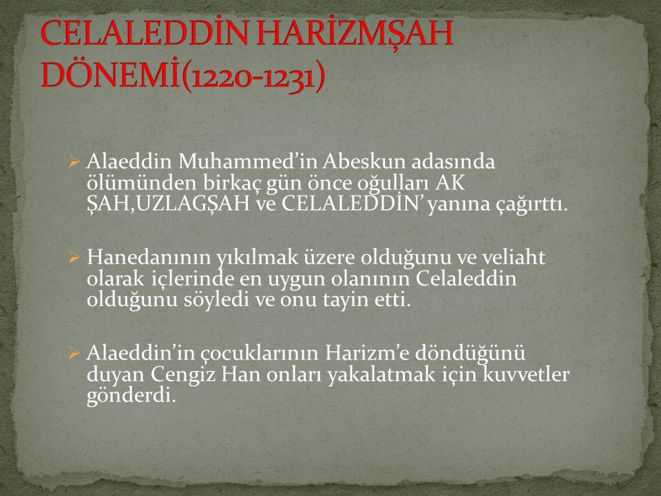 CELALEDDİN HARİZMŞAH DÖNEMİ(1220-1231)