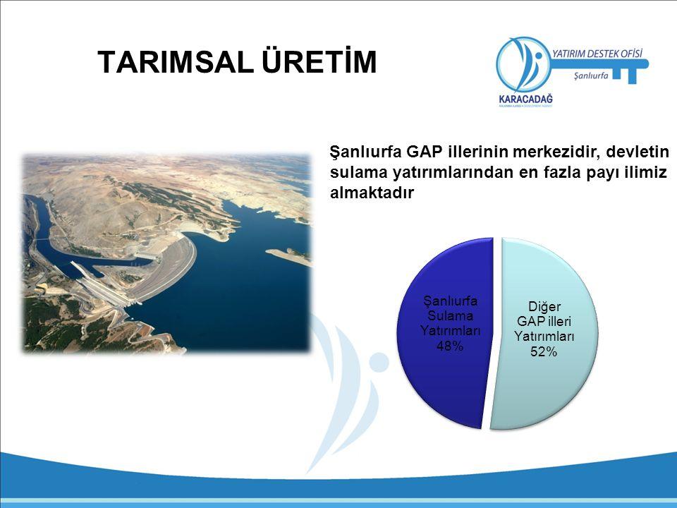 TARIMSAL ÜRETİM Şanlıurfa GAP illerinin merkezidir, devletin sulama yatırımlarından en fazla payı ilimiz almaktadır.