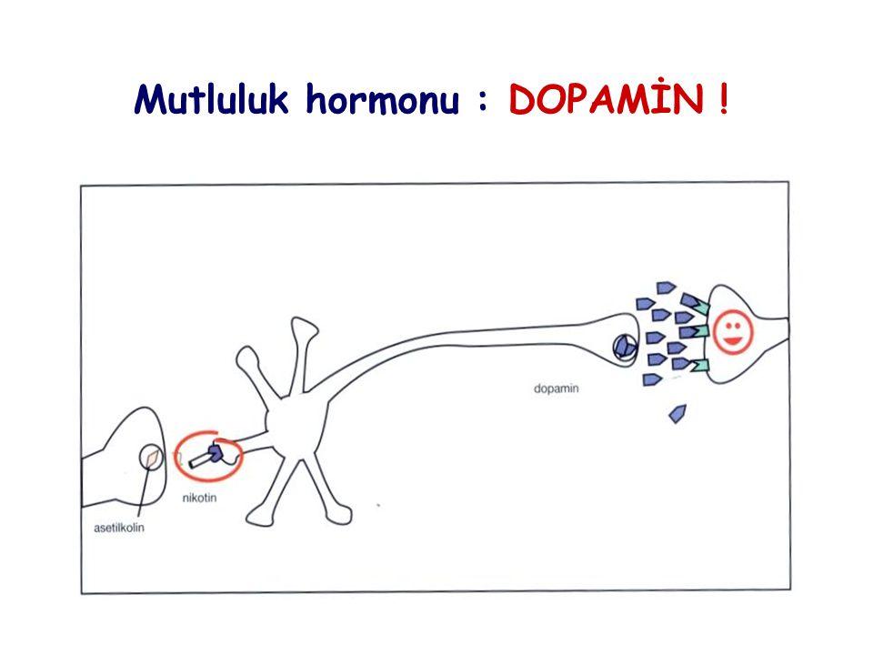 Mutluluk hormonu : DOPAMİN !