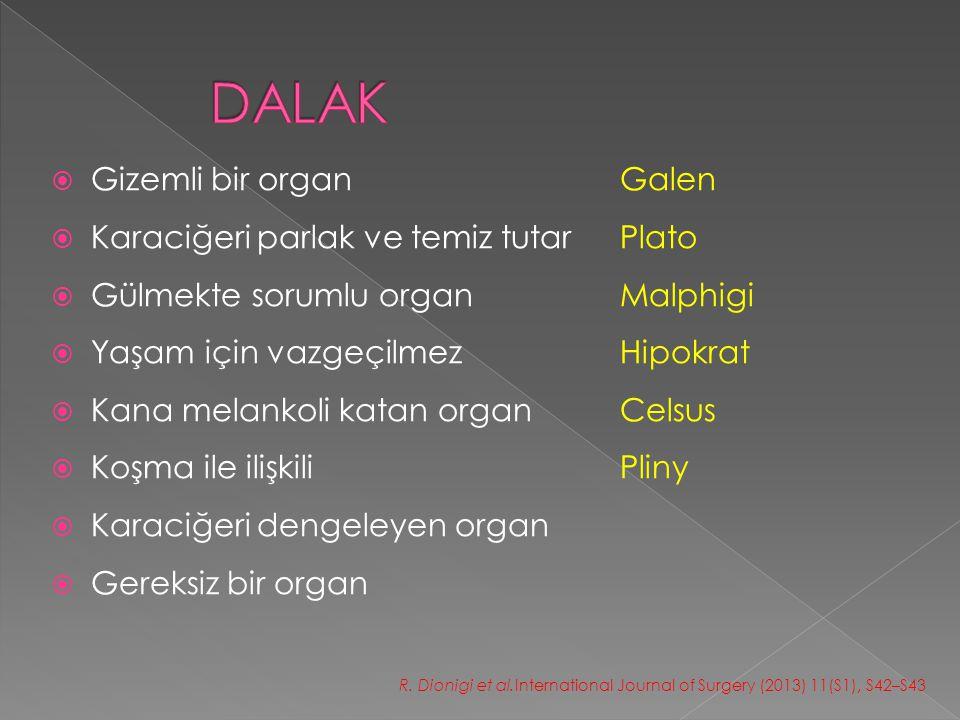 DALAK Gizemli bir organ Galen Karaciğeri parlak ve temiz tutar Plato