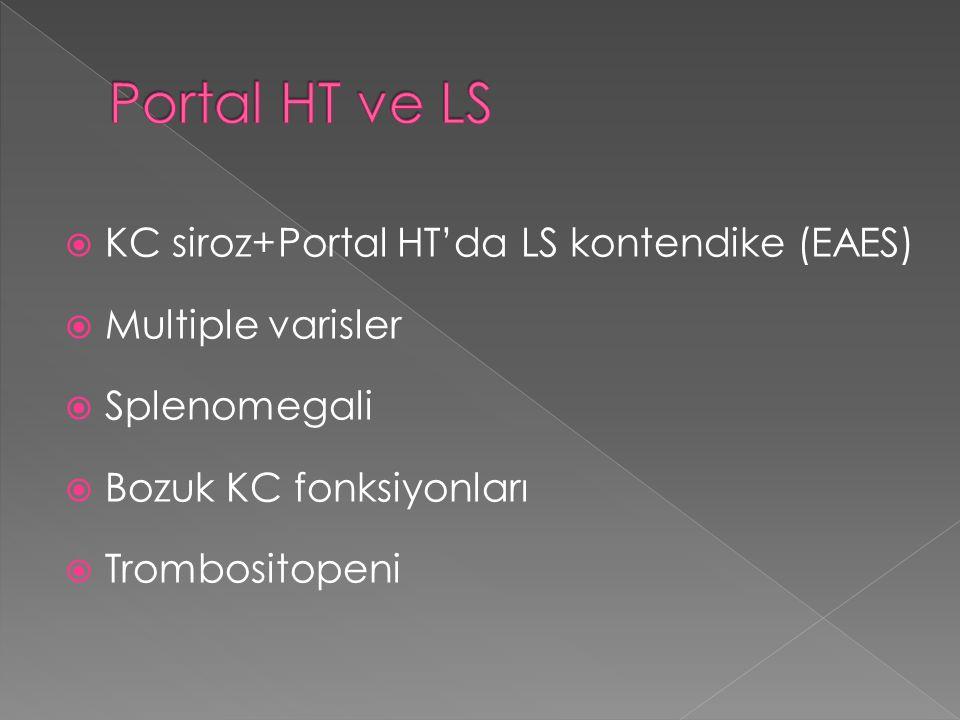 Portal HT ve LS KC siroz+Portal HT'da LS kontendike (EAES)