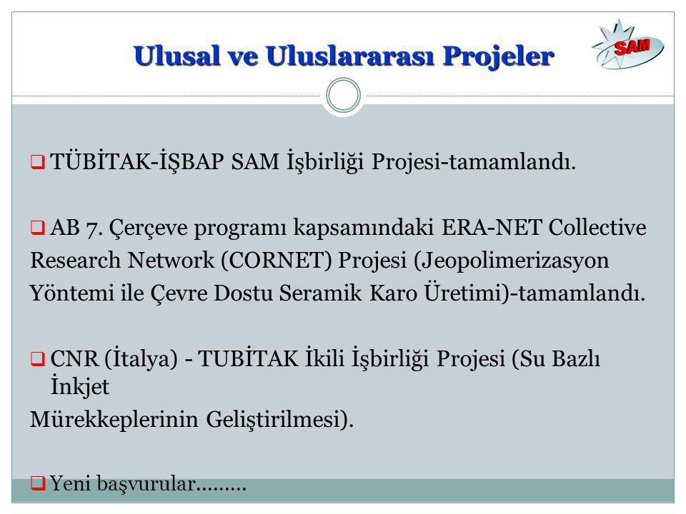 Ulusal ve Uluslararası Projeler
