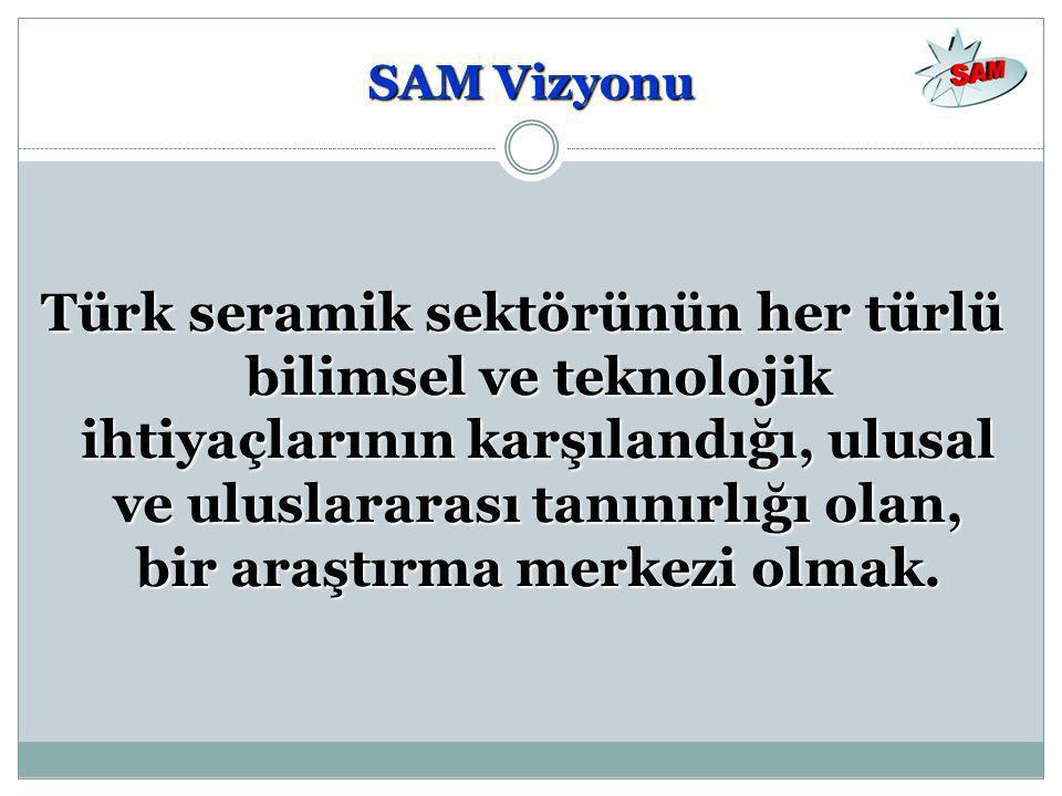 SAM Vizyonu