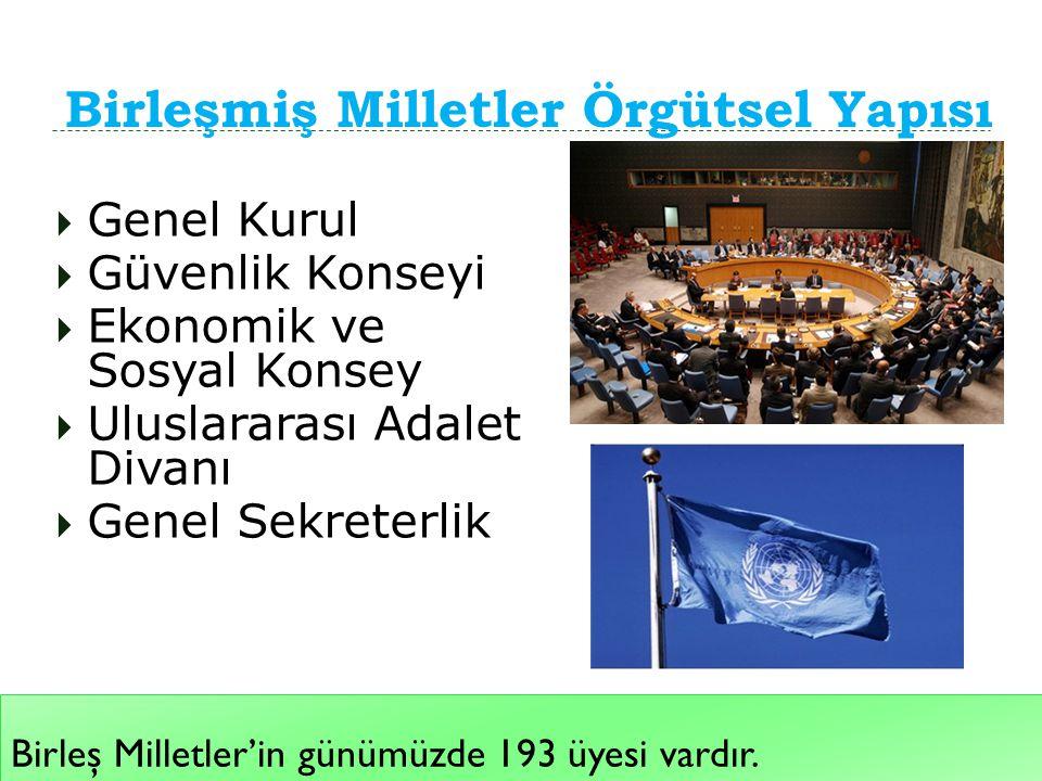 Birleşmiş Milletler Örgütsel Yapısı